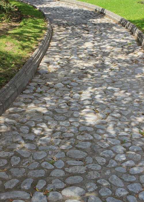 Cobblestone Greeting Card featuring the photograph Cobblestone Path In A Park by Robert Hamm