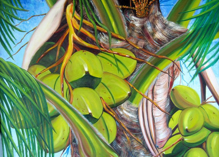 Coconut Greeting Card featuring the painting Coconuts by Jose Manuel Abraham