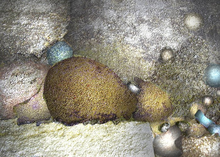 Photopainting Greeting Card featuring the digital art Cocoons by Helga Schmitt