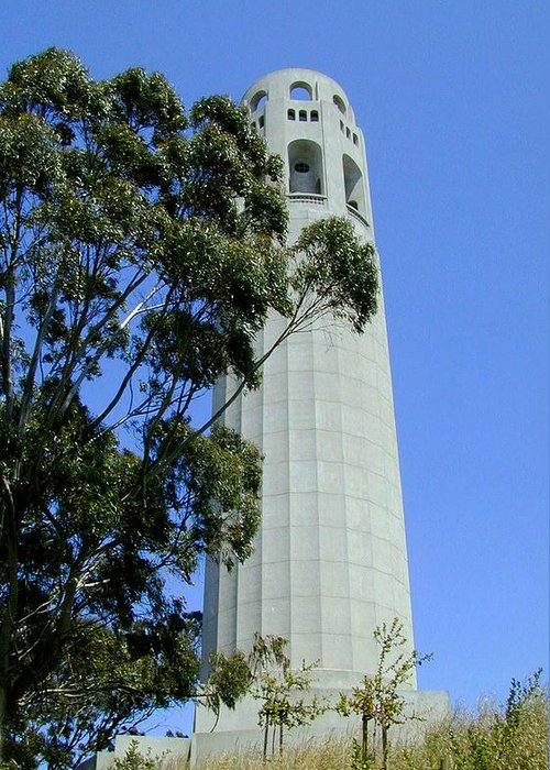 Coit Greeting Card featuring the photograph Coit Tower by Douglas Barnett