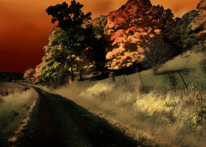 Road Greeting Card featuring the photograph Coles County by Jim Painter