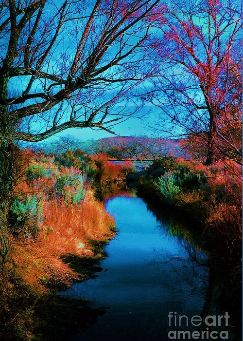 Color Greeting Card featuring the photograph Color Along The River by Diana Dearen