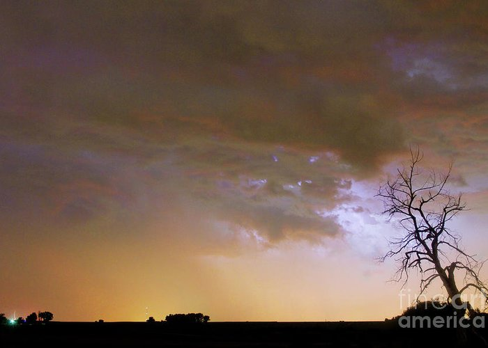 Tree Greeting Card featuring the photograph Colorful Colorado Cloud To Cloud Lightning Striking by James BO Insogna