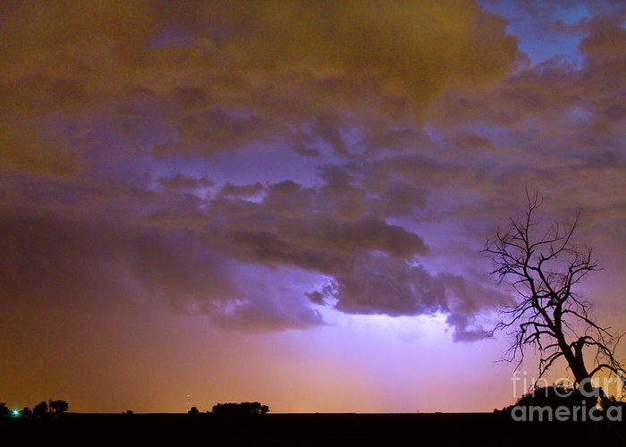 Tree Greeting Card featuring the photograph Colorful Colorado Cloud To Cloud Lightning Thunderstorm 27 by James BO Insogna