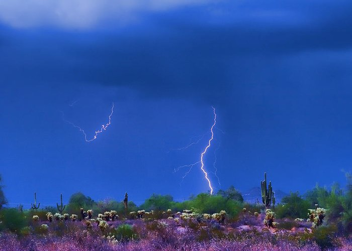 Lightning Photography Greeting Card featuring the photograph Colorful Desert Storm by James BO Insogna