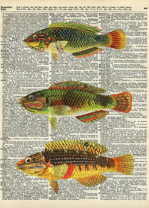 Trout Fishing Mixed Media Greeting Cards