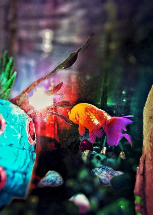 Fish Greeting Card featuring the photograph Colorful Fish by Eddie G