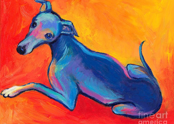 Italian Greyhound Painting Greeting Card featuring the painting Colorful Greyhound Whippet Dog Painting by Svetlana Novikova