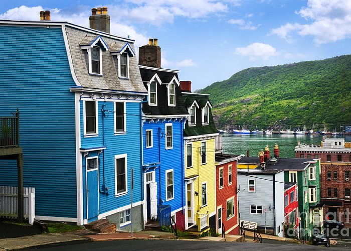 Street Greeting Card featuring the photograph Colorful Houses In St. John's by Elena Elisseeva