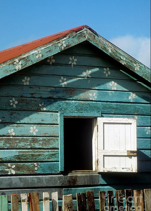 Ambergris Caye Greeting Card featuring the photograph Colorful Shack by John Greim