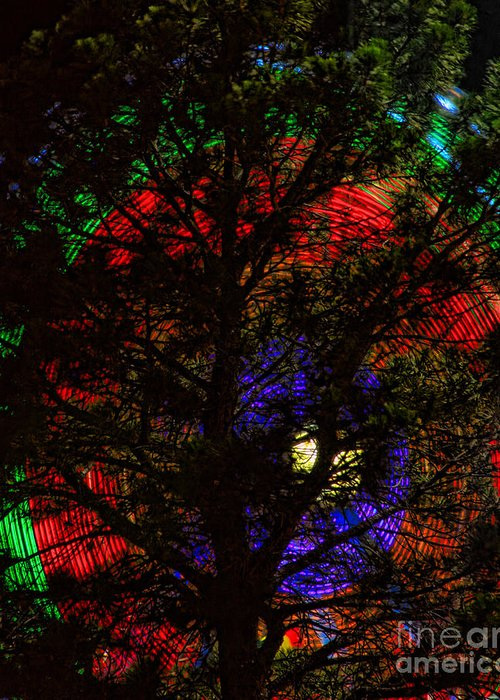 Greeting Card featuring the photograph Colorful Tree by James BO Insogna