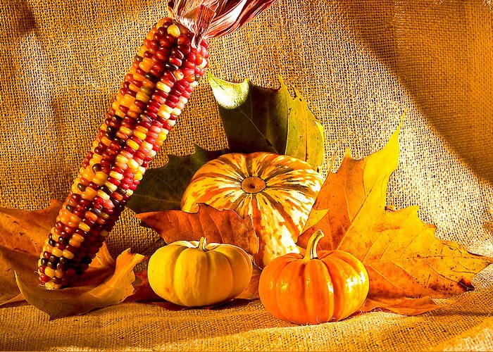 Pumpkins Greeting Card featuring the photograph Colors Of Autumn by Naman Imagery