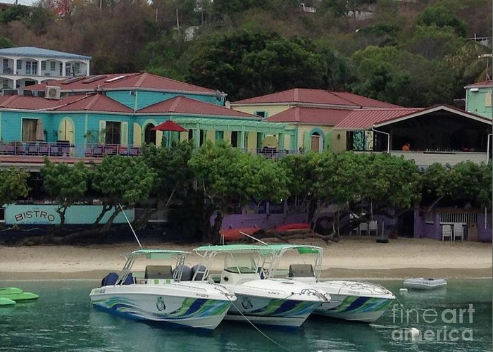 St. John Greeting Card featuring the photograph Colors Of St. John Us Virgin Islands by Gina Sullivan