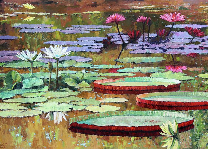 Garden Pond Greeting Card featuring the painting Colors on the Lily Pond by John Lautermilch