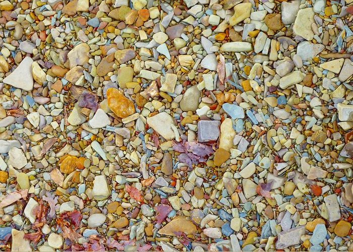 Rocks Greeting Card featuring the photograph Community Of Color by Tim Mattox