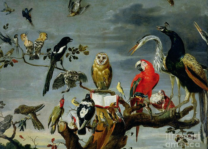 Concert Greeting Card featuring the painting Concert Of Birds by Frans Snijders
