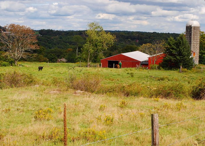 Connecticut Greeting Card featuring the photograph Connecticut Farm by Andrea Simon