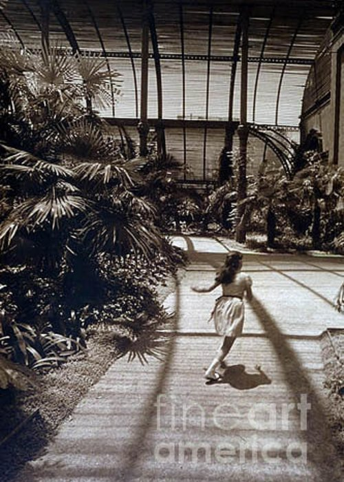 Sepia Greeting Card featuring the photograph Conservatory, Barcelona 1976 by Michael Ziegler