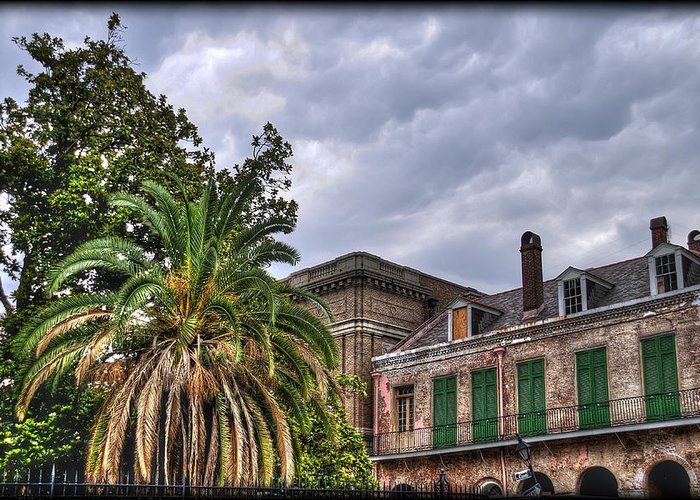 Nola Greeting Card featuring the photograph Conti Street by Tammy Wetzel