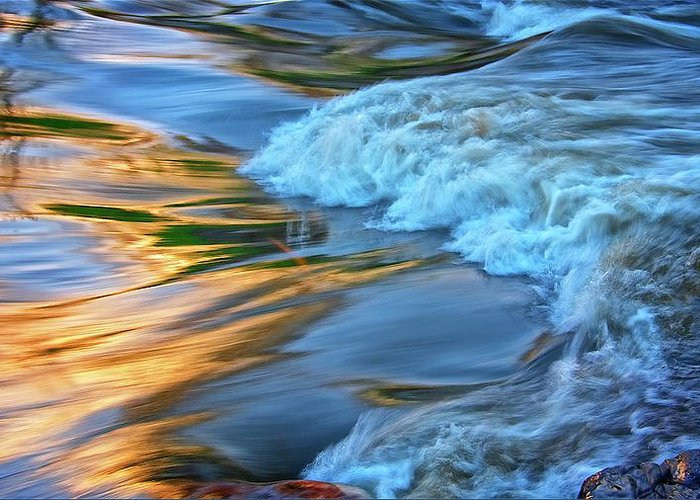 Nature Greeting Card featuring the photograph Cool Liquid Gold by Zayne Diamond Photographic