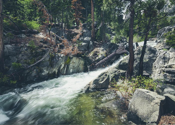 California Greeting Card featuring the photograph Cool Mountain Stream by Margaret Pitcher