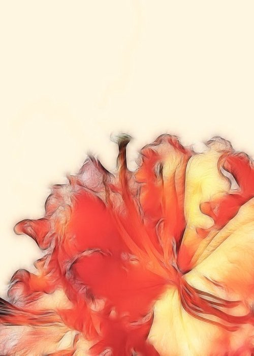 Rhodendron Greeting Card featuring the photograph Coral Rhododendron by Lynn Bolt