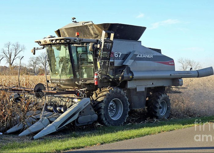 Corn Greeting Card featuring the photograph Corn Harvest by Steve Gass