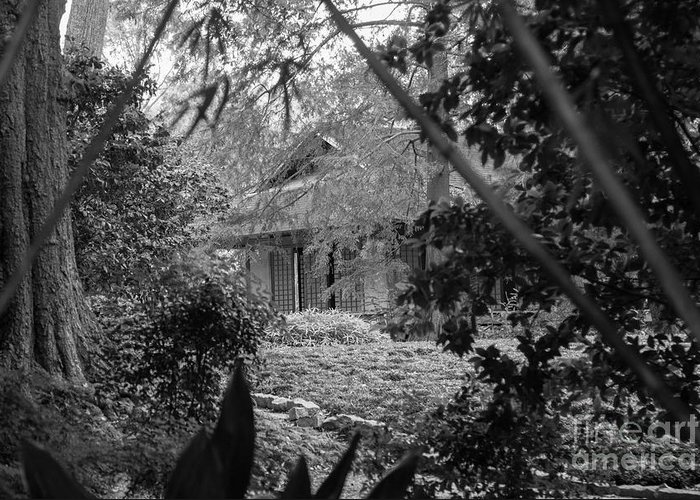 Landscape Greeting Card featuring the photograph Cottage Black White Gardens Louisiana by Chuck Kuhn