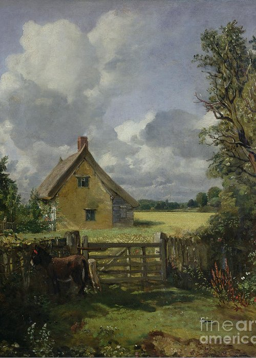 Cottage In A Cornfield Greeting Cards