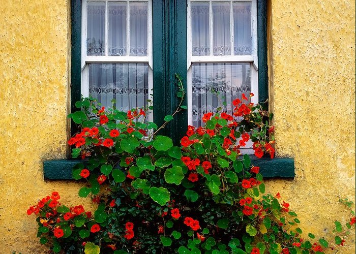 Cottage Greeting Card featuring the photograph Cottage Window, Co Antrim, Ireland by The Irish Image Collection