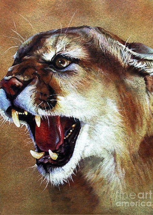 Southwest Art Greeting Card featuring the painting Cougar by J W Baker