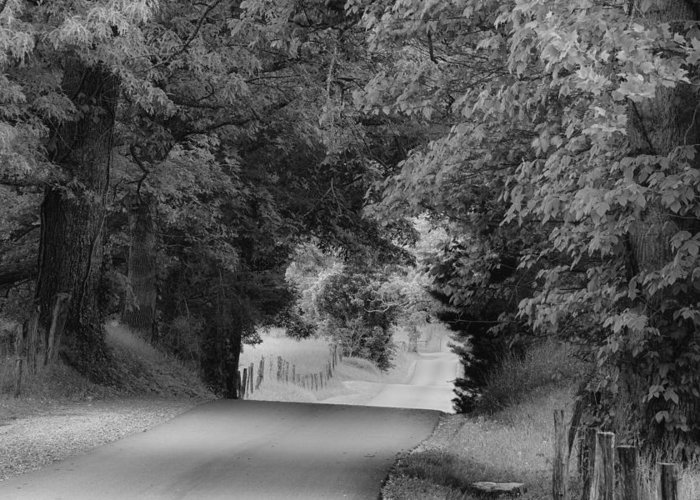 Cades Cove Greeting Card featuring the photograph Country Drive by Andrew Soundarajan