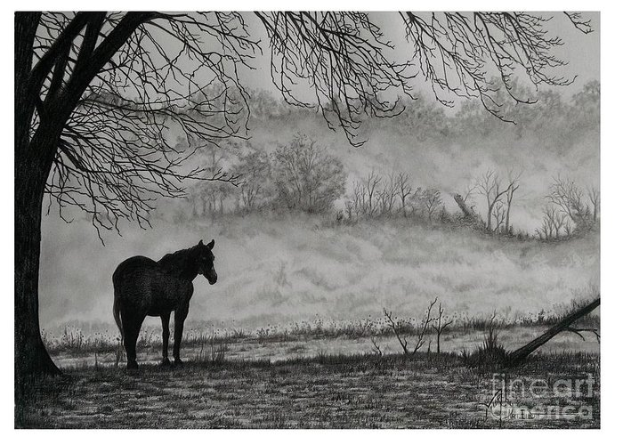 Pencil Greeting Card featuring the drawing Country Horse by Murphy Elliott