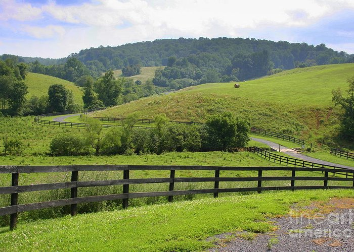 Country Greeting Card featuring the photograph Country Lane by Julie Lueders