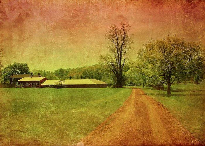 Country Living Greeting Card featuring the photograph Country Living - Bayonet Farm by Angie Tirado