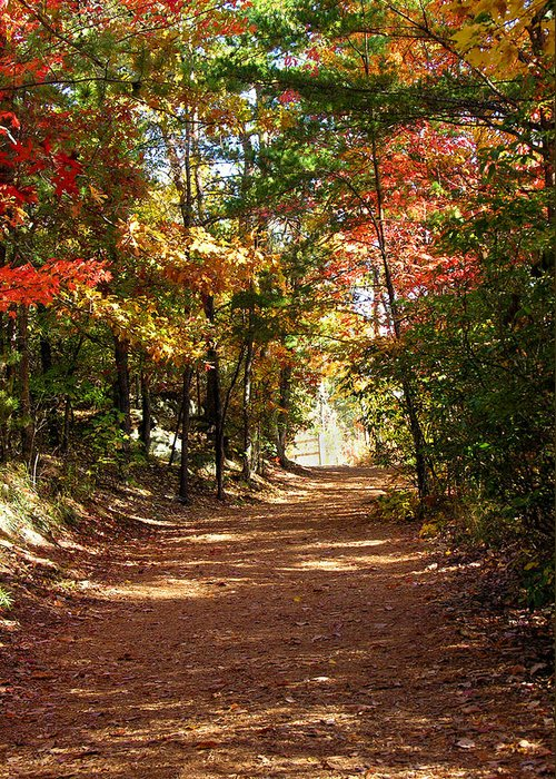 Fall Greeting Card featuring the photograph Country Path by Ralph Perdomo