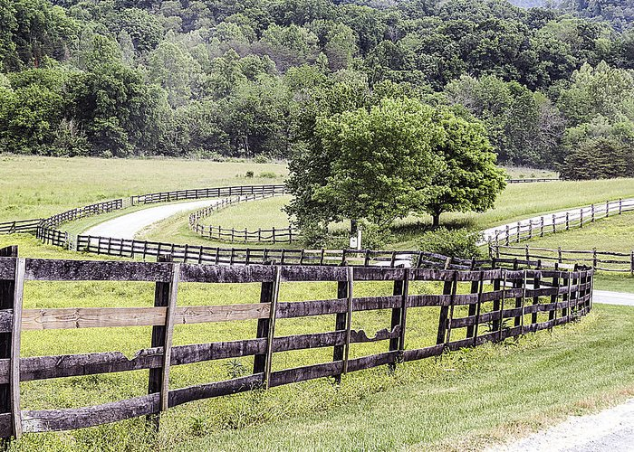 Curves Greeting Card featuring the photograph Country Road by Linda A Waterhouse