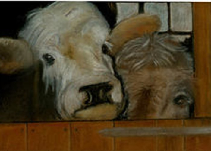 Animals Greeting Card featuring the painting Cow by Karin Skold