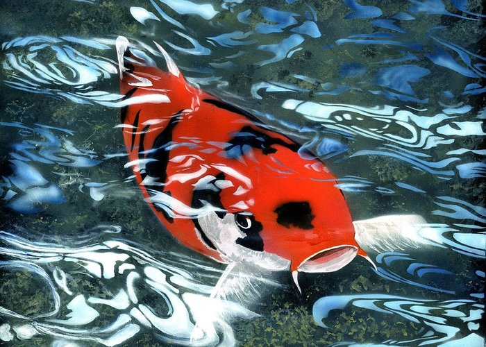 Coy Koi Greeting Card featuring the painting Coy Koi by Charles Parks