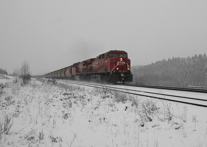 Transportation Greeting Card featuring the photograph Cp Rail 2 by Stuart Turnbull