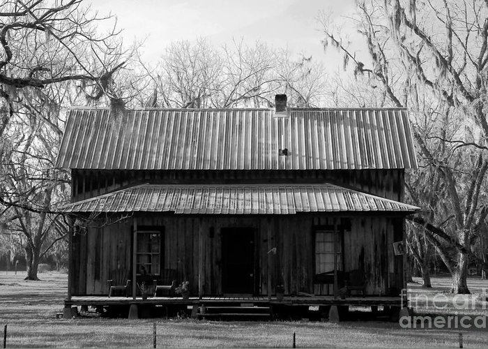Homestead Greeting Card featuring the photograph Cracker Cabin by David Lee Thompson