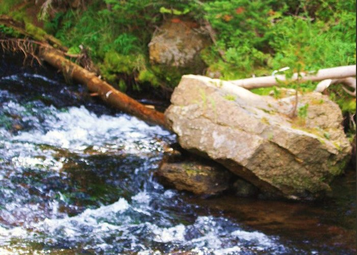 Creeks Greeting Card featuring the photograph Creekside by Russell Barton
