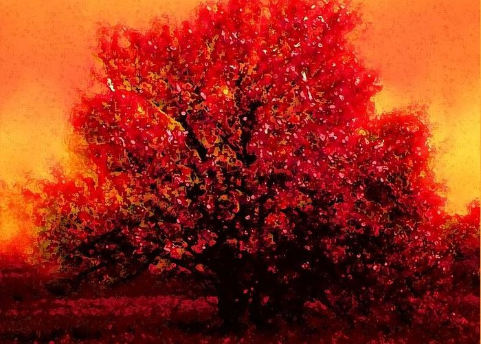 Crimson Blossoms Greeting Card featuring the photograph Crimson Blossoms by KaFra Art