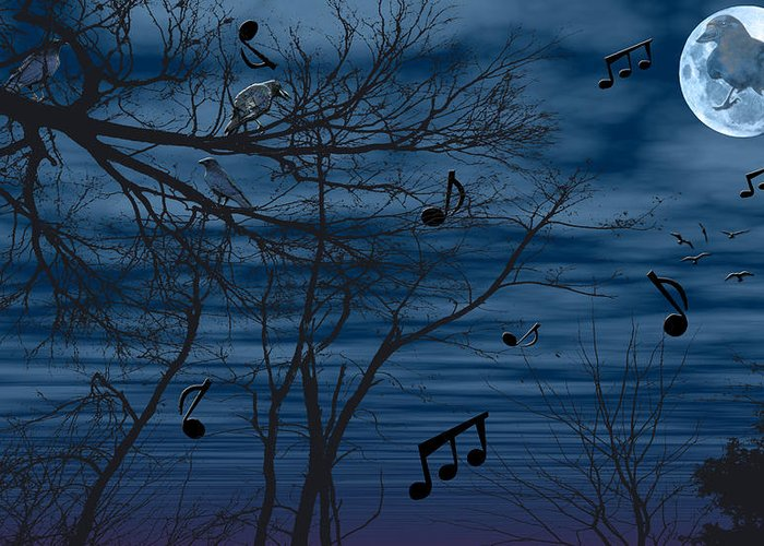 Birds Greeting Card featuring the photograph Crow Sings At Midnight by Evelyn Patrick