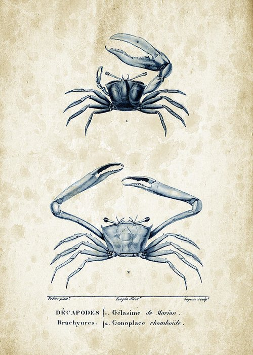 Crabs Greeting Card featuring the digital art Crustaceans - 1825 - 11 by Aged Pixel