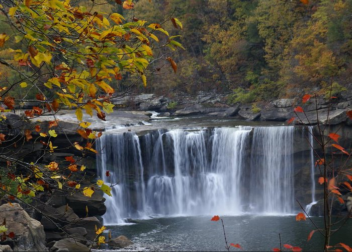 Landscape Greeting Card featuring the photograph Cumberland Falls In Gold by Bj Hodges