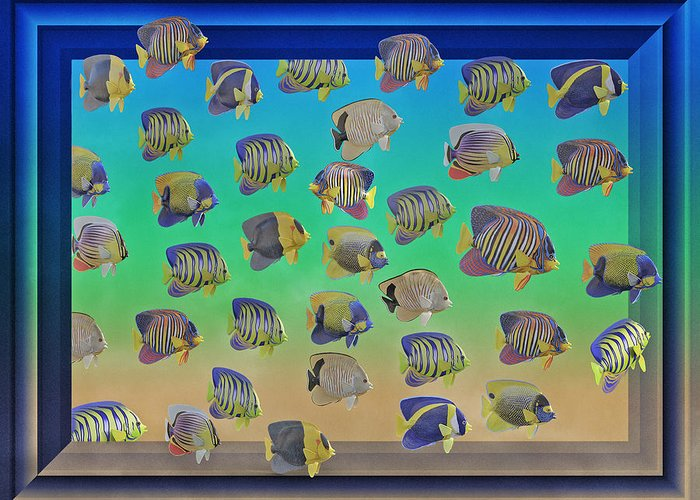 Schooling Fish Greeting Cards