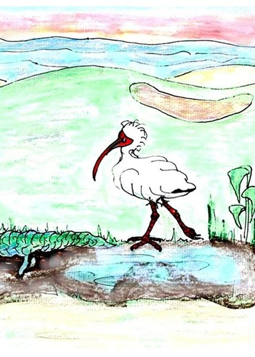 Ibis Greeting Card featuring the drawing Curious Ibis Stands By by Carol Allen Anfinsen