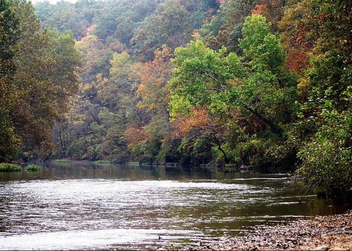 Current River Greeting Card featuring the photograph Current River 1 by Marty Koch