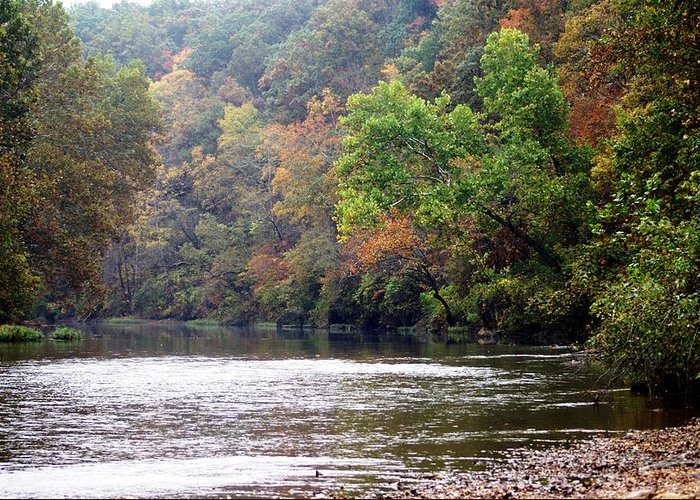 Current River Greeting Card featuring the photograph Current River Fall by Marty Koch